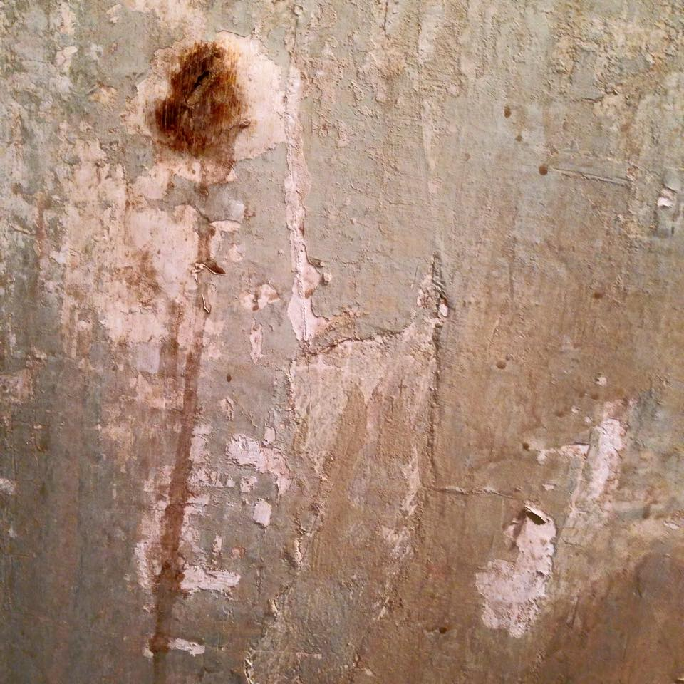 Rough luxe finishes see painting inc for Www painting com